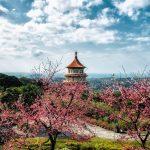 Visa Đài Loan nhanh