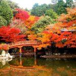 Hướng dẫn xin visa du lịch Đài loan online